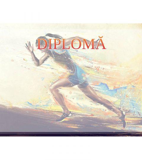 diploma-carton-DIPL70