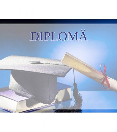 diploma-carton-DIPL73
