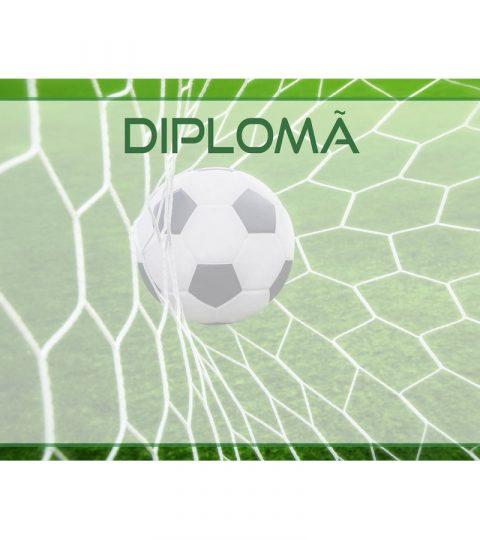 diploma-carton-DIPL76