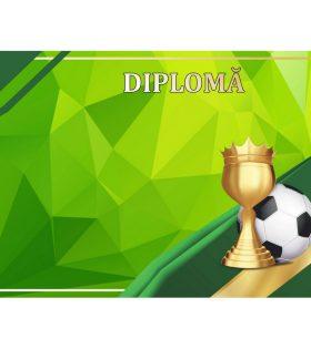 Diplomă carton DIPL78