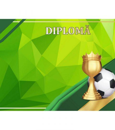 diploma-carton-DIPL78