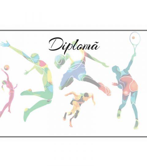 diploma-carton-DIPL80