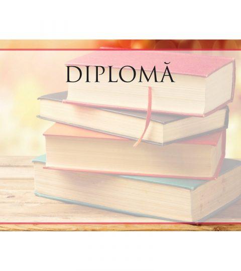 diploma-carton-DIPL81