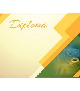 Diplomă carton DIPL88