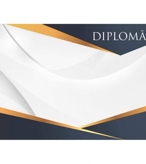 diploma-carton-DIPL91