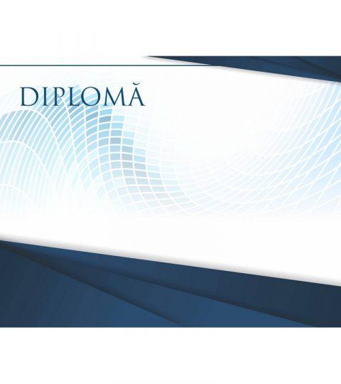 diploma-carton-DIPL93