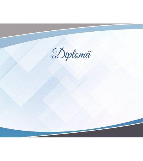 diploma-carton-DIPL94
