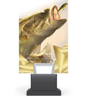 Trofeu plexiglas CG01C/FIS