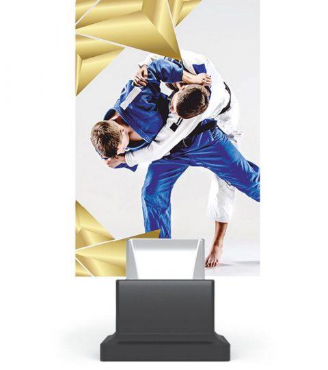 trofee-plexiglas-CG01_JUD