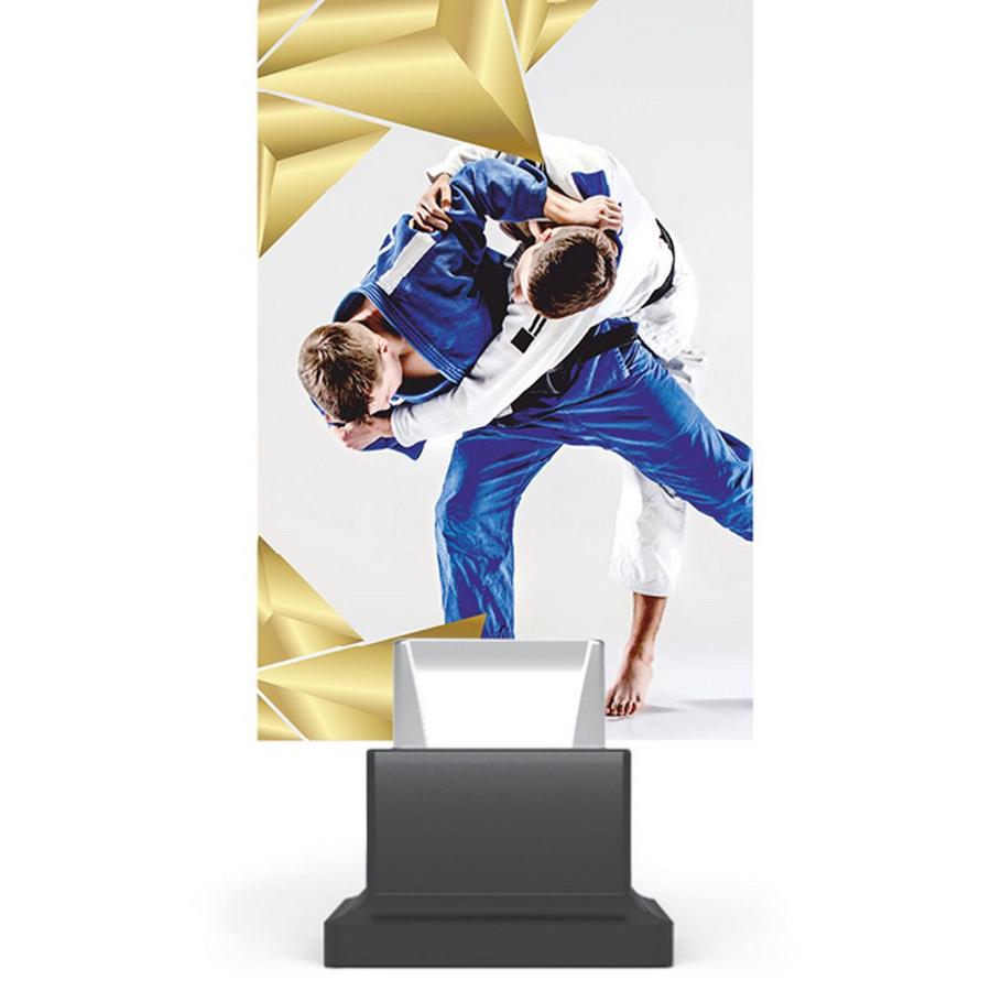 Trofeu plexiglas CG01C/JUD
