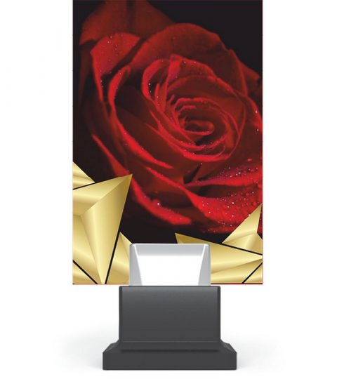 trofee-plexiglas-CG01_ROS