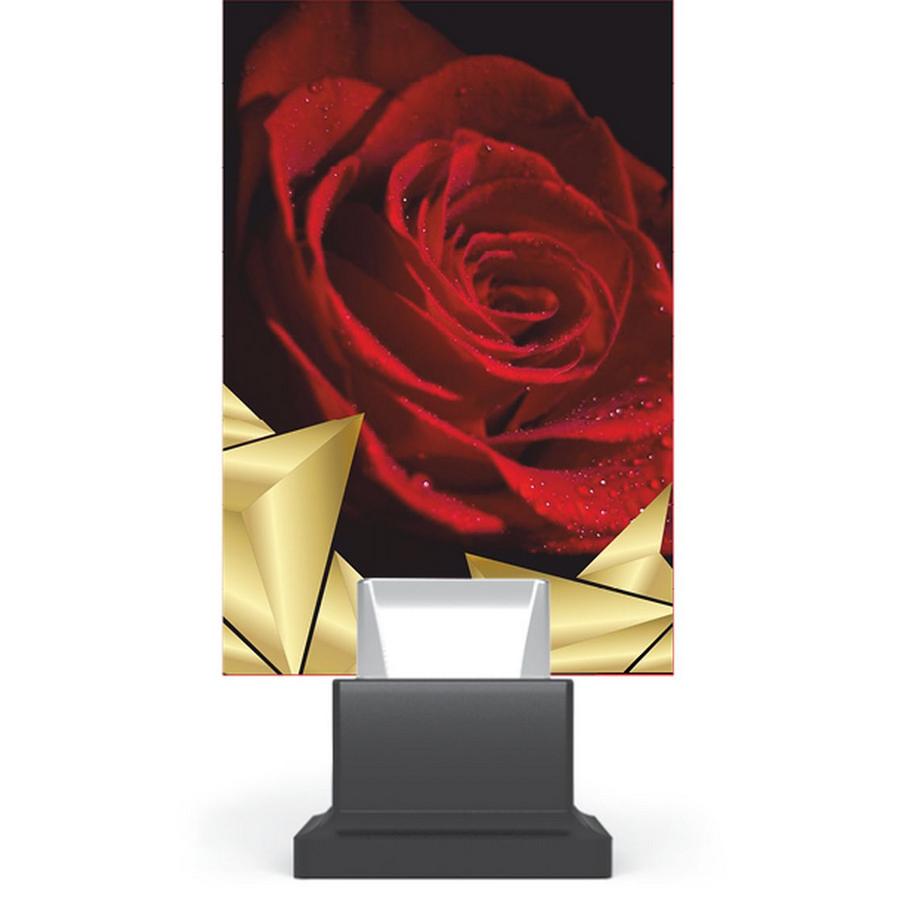 Trofeu plexiglas CG01C/ROS