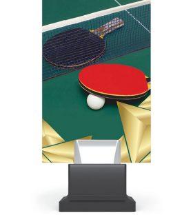Trofeu plexiglas CG01C/TAB