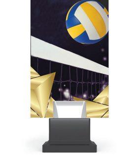 Trofeu plexiglas CG01C/VOL