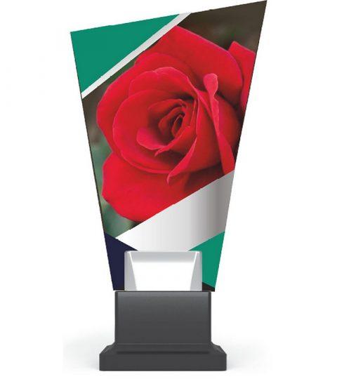 trofee-plexiglas-CG02_ROS